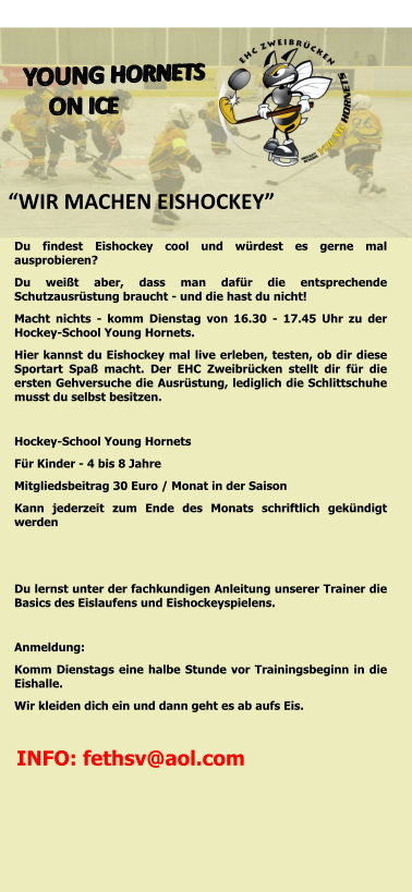 Flyer Hockeyschool